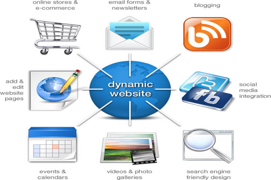 Dynamic web application
